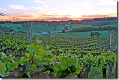 the-parable-of-the-workers-in-the-vineyard