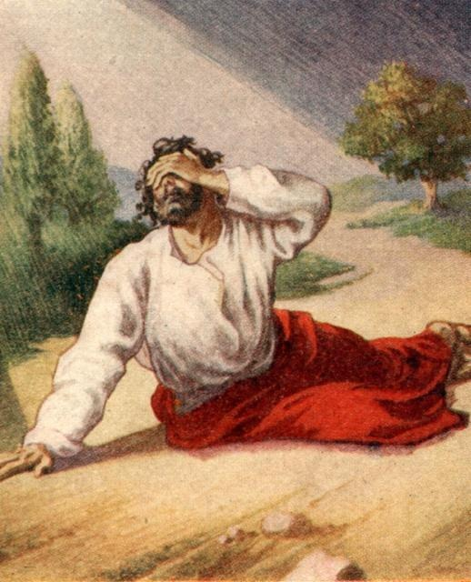 download Pilgrims