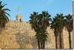 2278993-340161-walls-of-jerusalem-ancient-palm-trees-and-flags