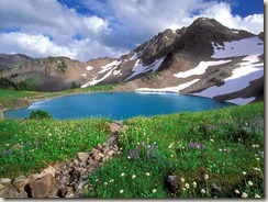 alpine_tranquility_olympic_national_park_washington
